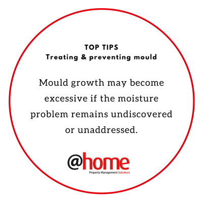 Preventing & Treating Mould